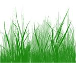 Выводим пятна от травы