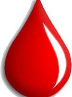 Как питаться при определенной группе крови